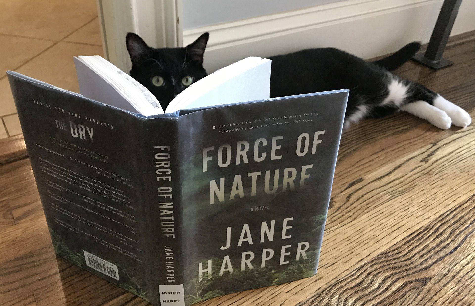 Harper y su novela Naturaleza Salvaje nos impedirá leer otra cosa hasta acabar el libro