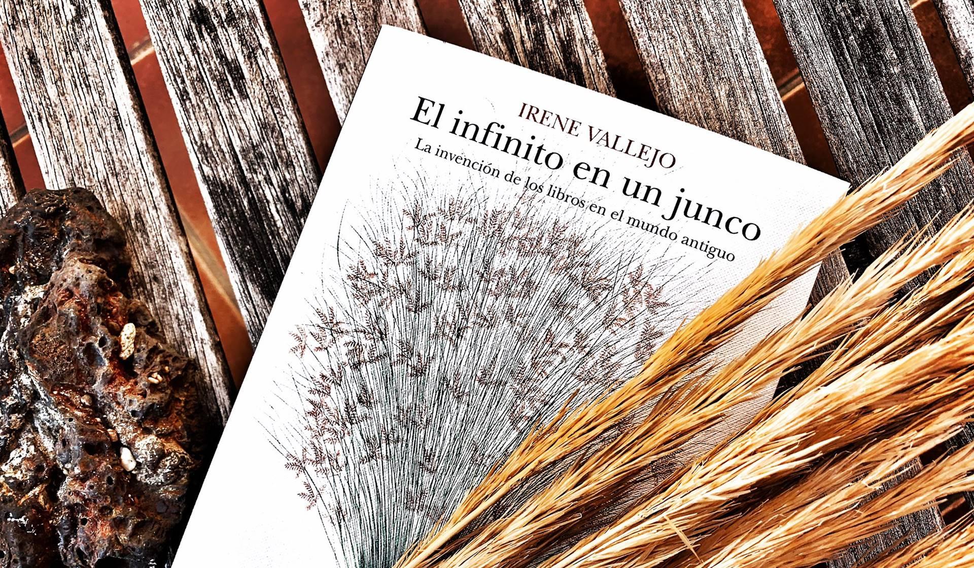 El infinito en un junco de Irene Vallejo