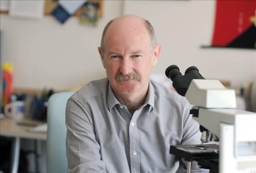 El neurobiólogo Rafael Yuste, portavoz del Grupo Morningside.
