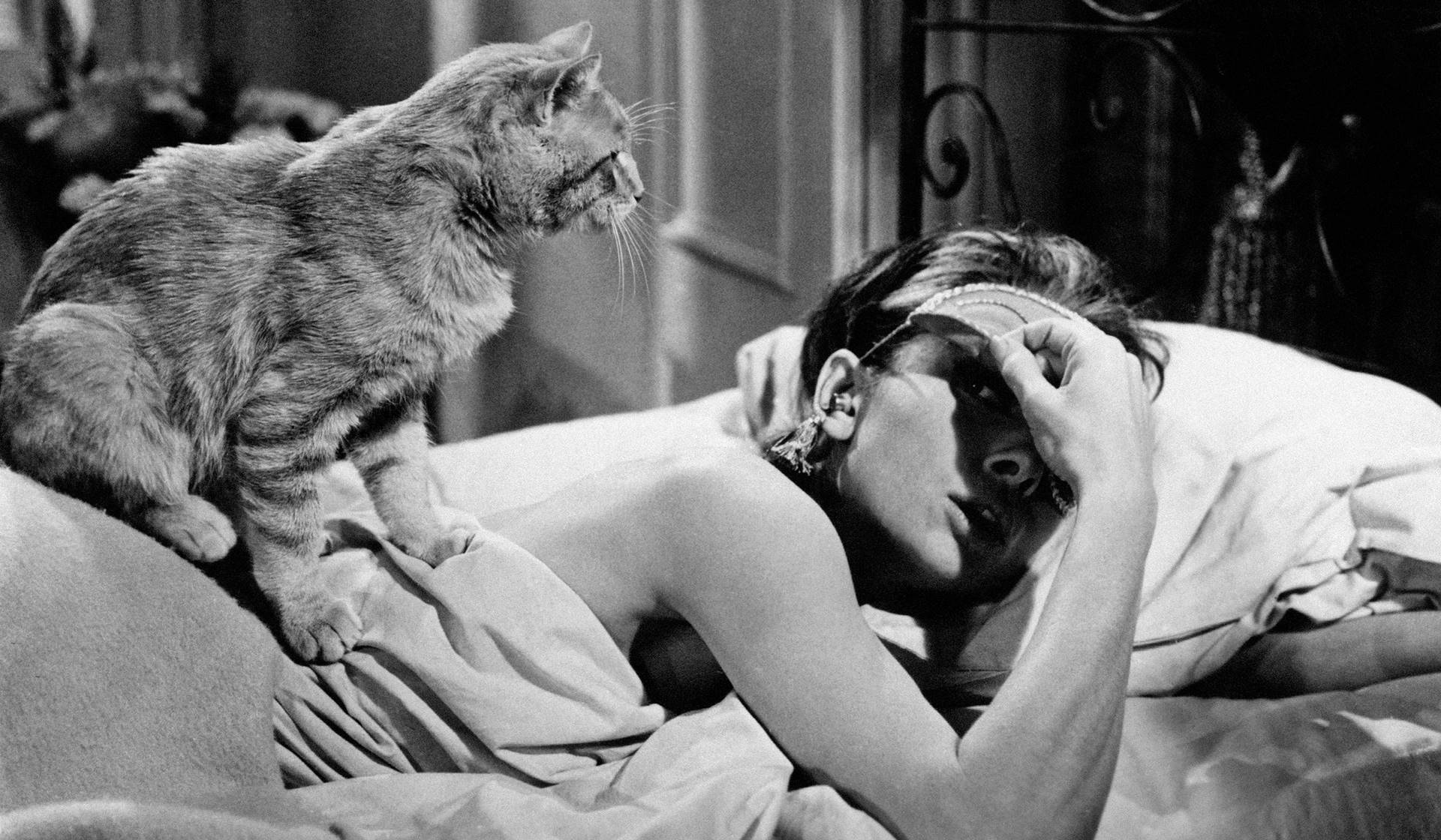 Noches insomnes de Elizabeth Hardwick